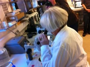 Tora Aasland - nå også forsker ved UiB!